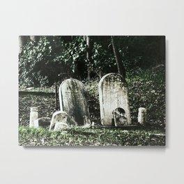 Family plot Metal Print