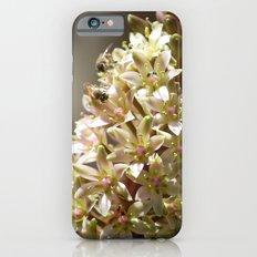 Three Bees iPhone 6s Slim Case