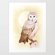 Barn Owl recolour Art Print