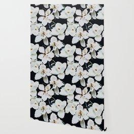 Magnolia Midnight Wallpaper