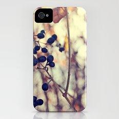 Autumn Sun in Ohio Slim Case iPhone (4, 4s)
