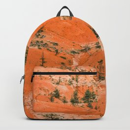 Bryce Canyon Hoodoos landscape on Queens Garden Trail Backpack