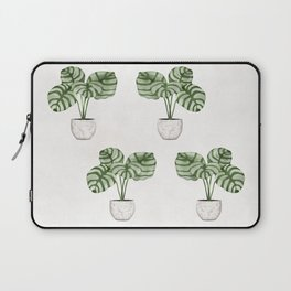 Calathea plant Laptop Sleeve