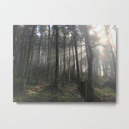 Coopers Cabin Metal Print