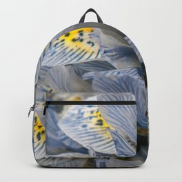 Blue and Yellow Dwarf Iris by Teresa Thompson Backpack