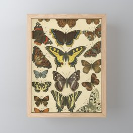Beautiful Butterflies Framed Mini Art Print