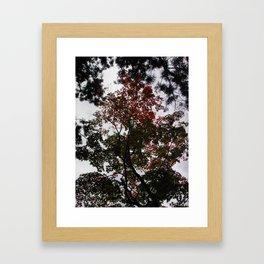 Art Drops in the Air (Japan) Framed Art Print