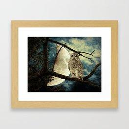 Barred Owl Bird Night Moon Blue Tans Country Art A137 Framed Art Print