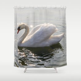 one swan a swimming Shower Curtain