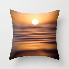 Silken Throw Pillow
