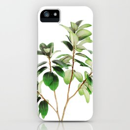 Indian Rubber Tree iPhone Case