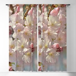 Spring 0159 Blackout Curtain