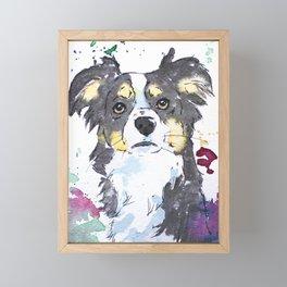 Miniature Australian Shepherd Design Framed Mini Art Print