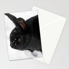 Suki Stationery Cards