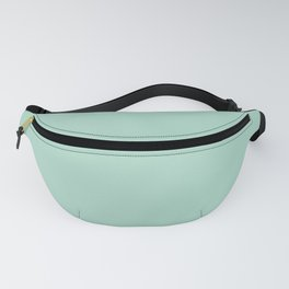 Tranquility (Green/Mint) Color Fanny Pack