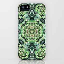 Succulent Splendor Three iPhone Case