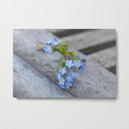 blue flower Fortget Me Not Metal Print