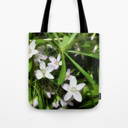 Spring Beauty 09 Tote Bag