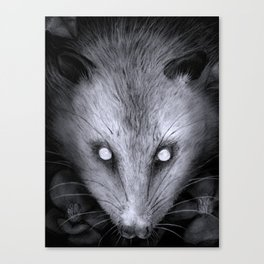 Something Ruthless Canvas Print