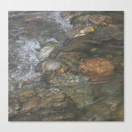 Natural Mosaic 4 Canvas Print