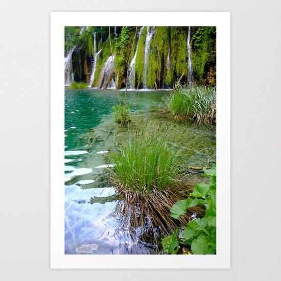 A Pond Art Print