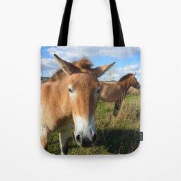 Przewalski horses 02 Tote Bag