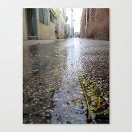 Rain leaf  Canvas Print