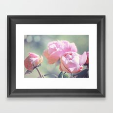 Pink Peony 2 Framed Art Print