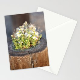 Friday Flowers Stationery Cards