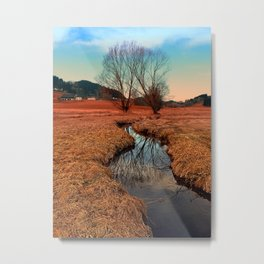 A stream, dry grass, reflections and trees | waterscape photography Metal Print
