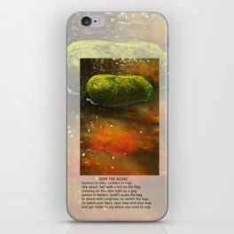 Doin the Zigzag iPhone Skin
