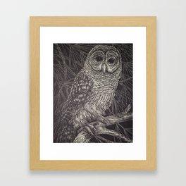 Illustrated Owl Framed Art Print