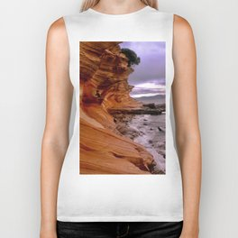 Painted Cliffs Biker Tank