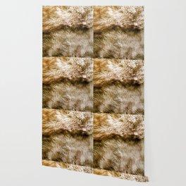 Fluffy Fur Wallpaper