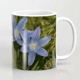 Snow Glories Close up Coffee Mug