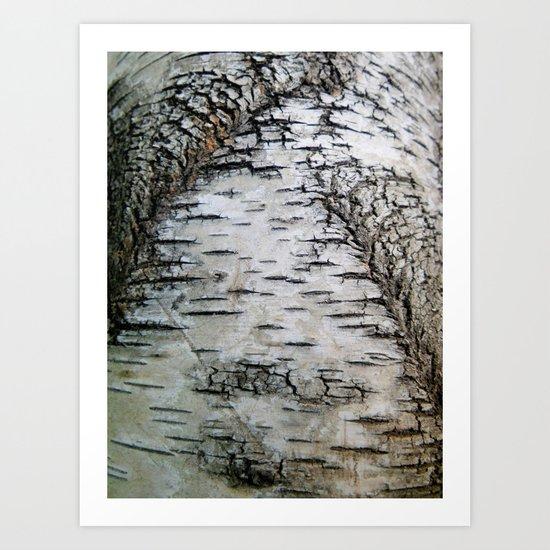 Life of a Fissure Art Print