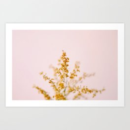 Airy - Nature Photography Art Print