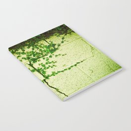 Ivy Wall Notebook