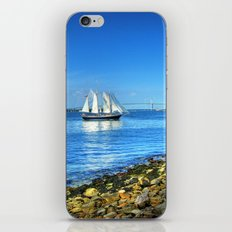 Rhode Island iPhone & iPod Skin