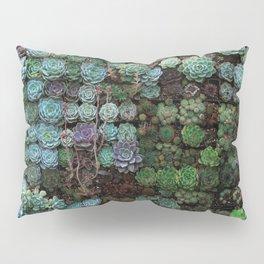 Field of Succulents Pillow Sham