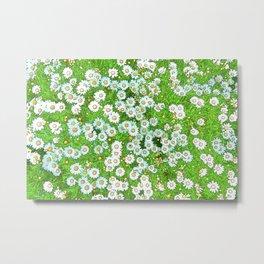 Daisies Painting Metal Print