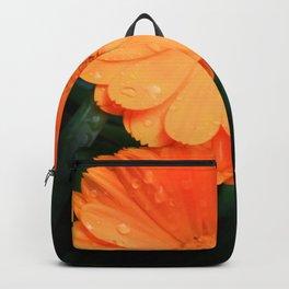 Captivating Calendula Backpack