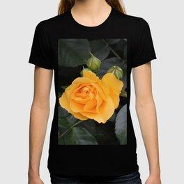 "A Rose Named ""Julia Child"" T-shirt"