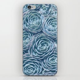 Fine Art Photograph of a Succulent, Blue and Green iPhone Skin