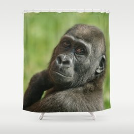 Gorilla Shufai Looking Over His Shoulder Shower Curtain