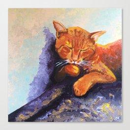 Cat, Acrylic on Canvas Canvas Print