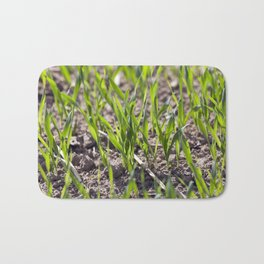 field with cereals Bath Mat