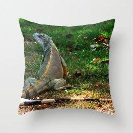 Gallina de Palo @ Rincon Throw Pillow