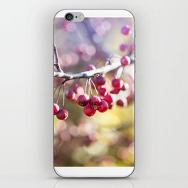 Jewels iPhone Skin
