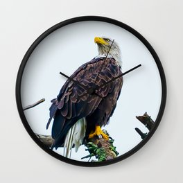 Bemidji Eagle I Wall Clock